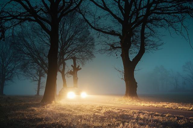 auto v mlze.jpg